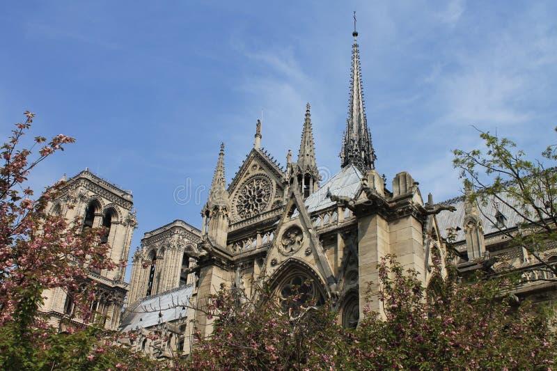 De dame van Notre van Parijs stock afbeeldingen