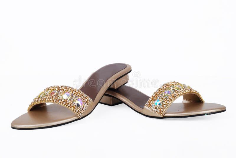 De dames stellen zich schoenen voor stock afbeelding