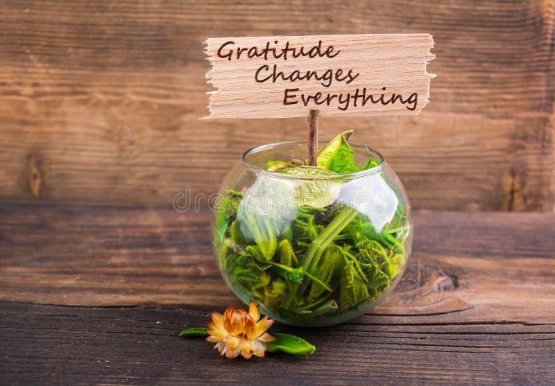 De dankbaarheid verandert alles royalty-vrije stock foto