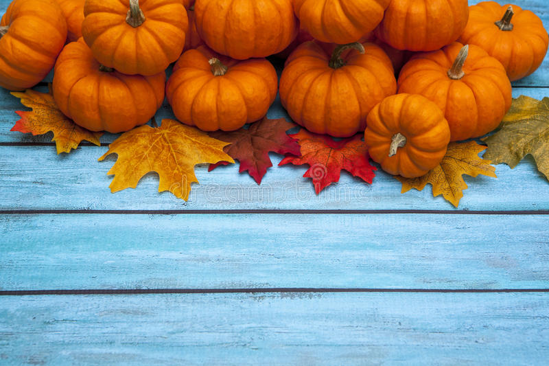 De dankzeggingsachtergrond van de de herfstpompoen stock afbeeldingen