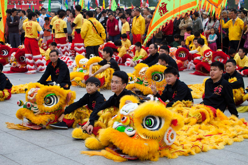 De dansers van de leeuw stock foto's