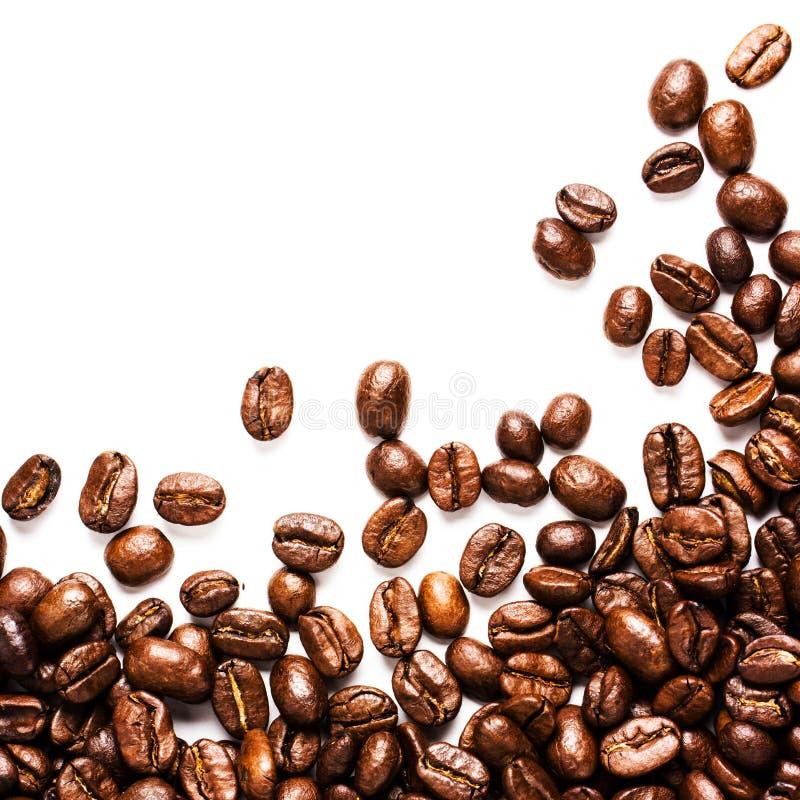 De de geroosterde achtergrond of textuur van Koffiebonen met wit exemplaar spac royalty-vrije stock foto