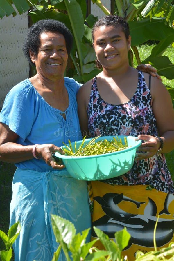 De de inheemse moeder en dochter van Fijian stock foto's