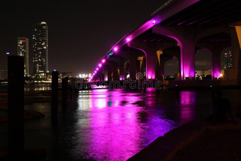De de nachtmening van de binnenstad van Miami florida De V.S. stock foto's
