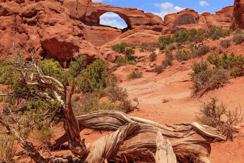 De de Rotscanion van de horizonboog overspant Nationaal Park Moab Utah stock afbeeldingen