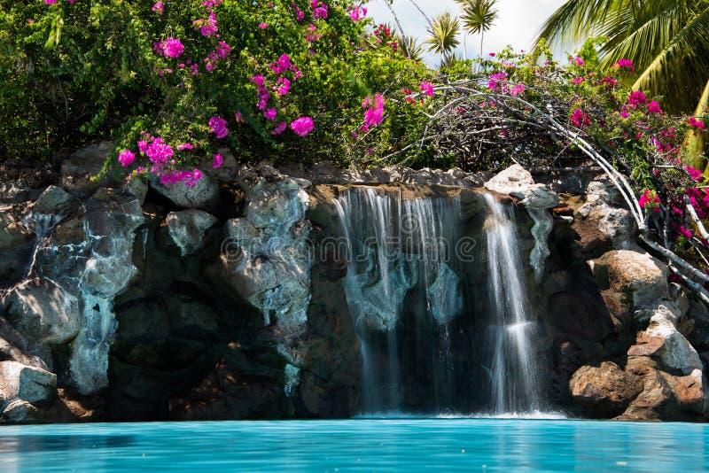 De de tropische waterval + bougainvillea van de hotelpool stock afbeelding