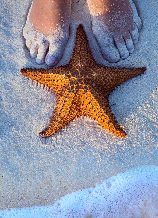 De de vrouwelijke benen en zeester van Art Beautiful op het strandzand royalty-vrije stock foto's