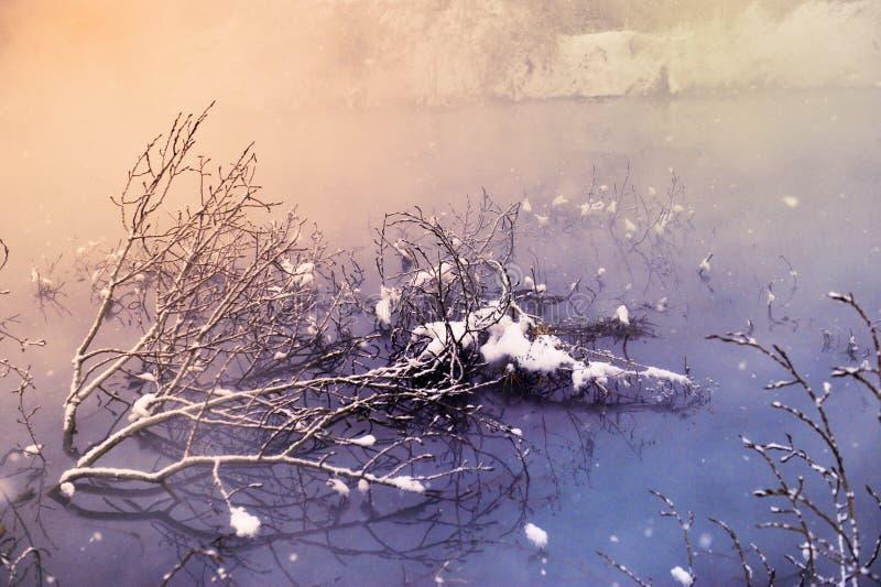 De de winterochtend stock afbeelding