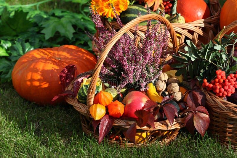 De decoratie van de herfst royalty-vrije stock foto