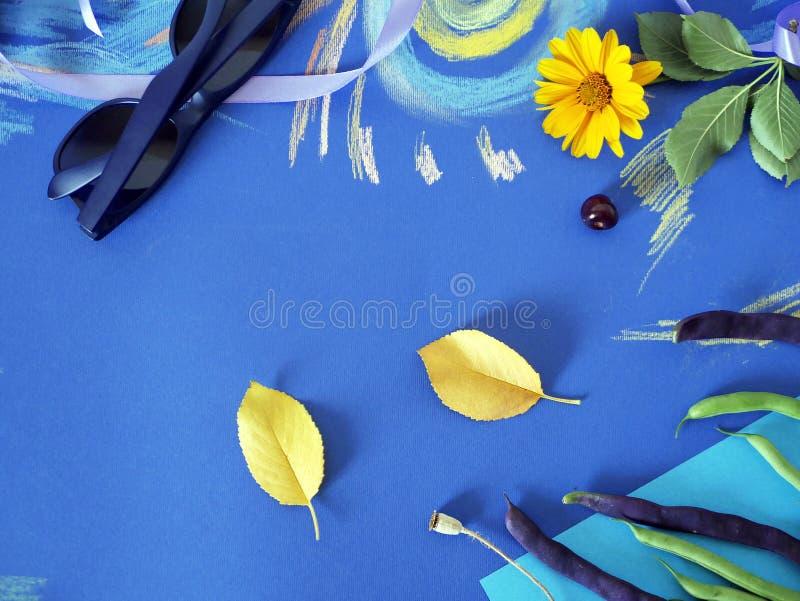 De decoratieve de herfstsamenstelling van gele bloemen, bladeren, aspergebonen, vruchten, kleurde document op gekleurd blauw docu stock foto