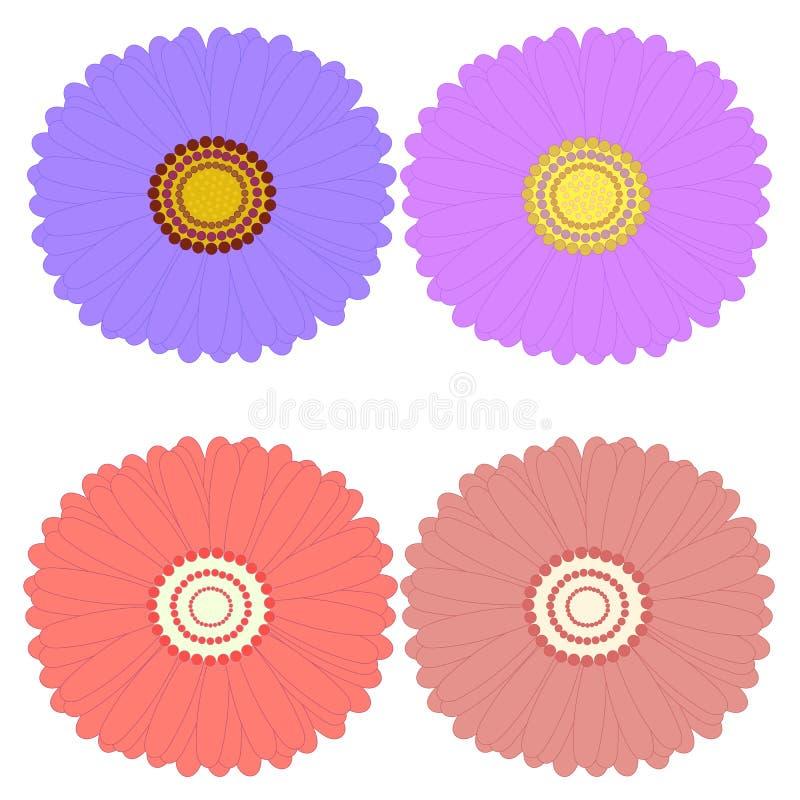De decoratieve hoogste mening van asterbloemen, ontwerpelementen stock illustratie