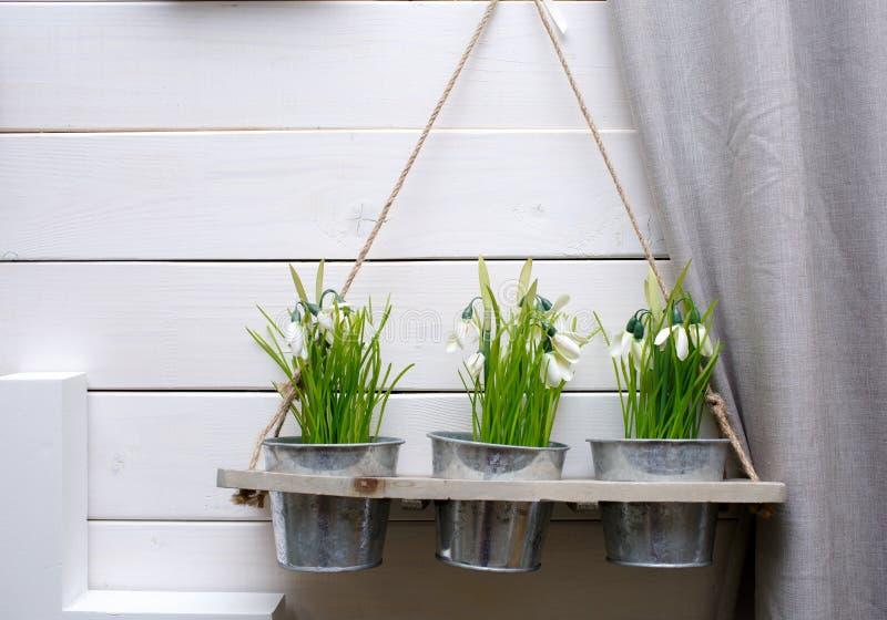 De decoratieve potten van bloemen versieren een muur stock afbeelding