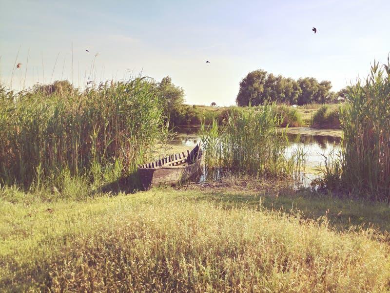 De delta van Donau royalty-vrije stock afbeelding
