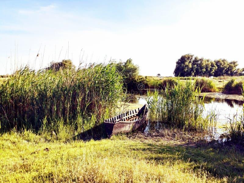 De delta van Donau stock afbeeldingen