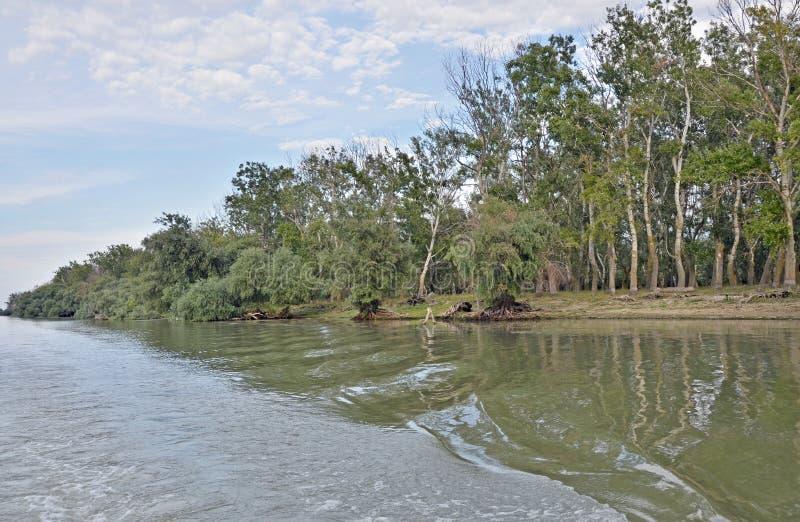 De delta van Donau stock afbeelding
