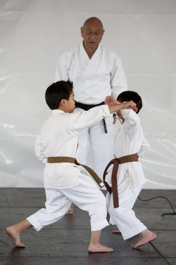 De Demonstratie van de karate royalty-vrije stock fotografie
