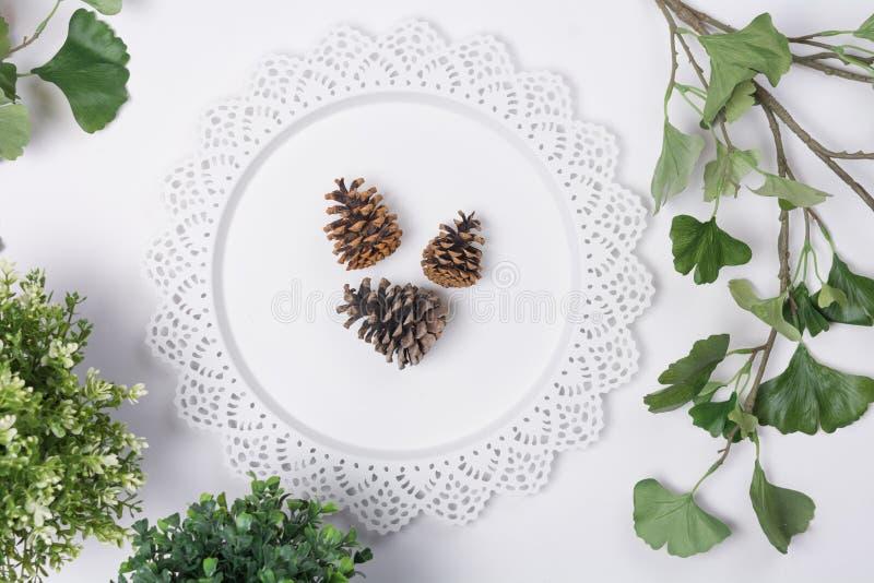 De denneappels op Dienblad met Gebladertevlakte leggen Hoogste Mening stock afbeelding