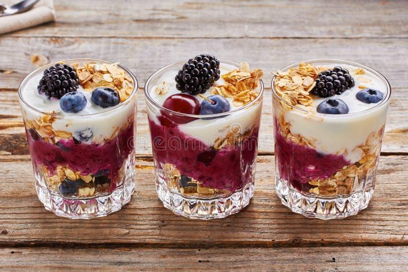 De desserts van de boomyoghurt met bessen en muesli stock afbeelding