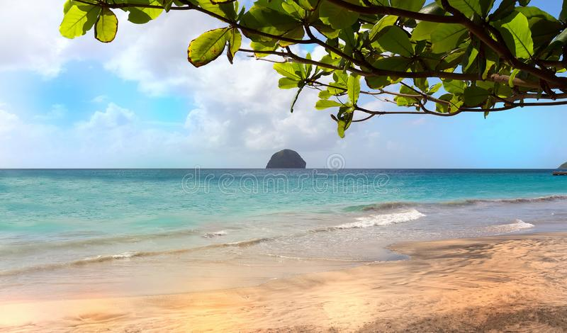 De Diamantrots en het Caraïbische strand, het eiland van Martinique stock afbeeldingen