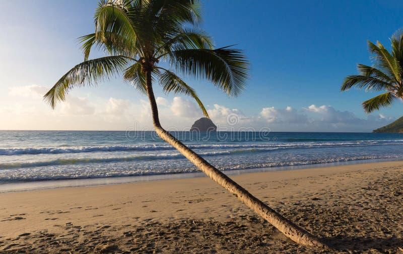 De Diamantrots en het Caraïbische strand, het eiland van Martinique royalty-vrije stock foto