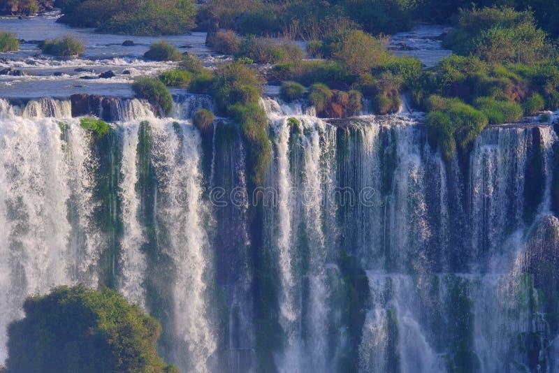 De dichte mening van Iguazu valt, Cataratas Foz Do Iguacu, watervallen van de Iguazu-Rivier, Brazilië stock afbeeldingen