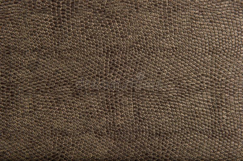 De Dierlijke ReptielKlomp en Textur van uitstekende kwaliteit van de Huid royalty-vrije stock afbeeldingen