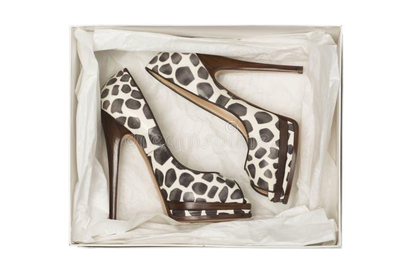 De dierlijke schoenen van de druk hoge hiel in doos stock fotografie