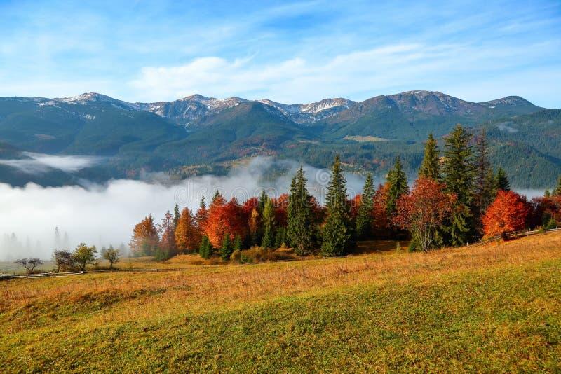 De dikke mist, zoals melk, behandelde de vallei, waarachter bergheuvels toeneem royalty-vrije stock afbeeldingen