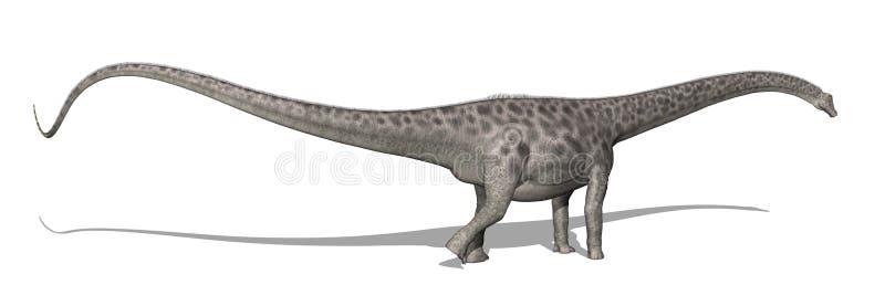 De Dinosaurus van Diplodocus stock illustratie