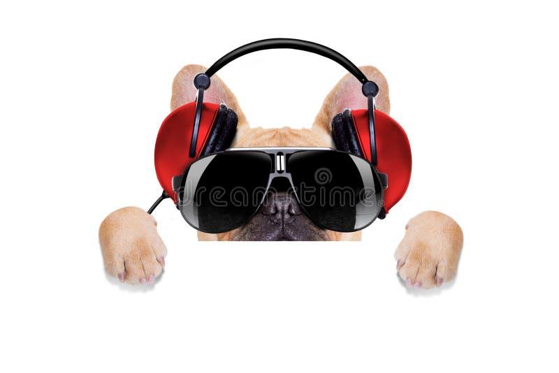 De discohond van DJ stock afbeeldingen