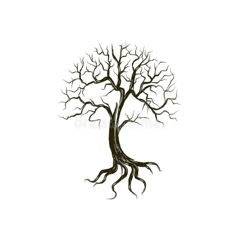 De dode ruwe boomillustratie, drogen en het ruien boom de schets en de stijl van de handtekening stock fotografie