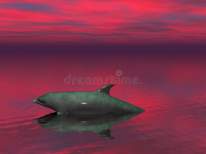 De dolfijn van de zonsondergang stock illustratie