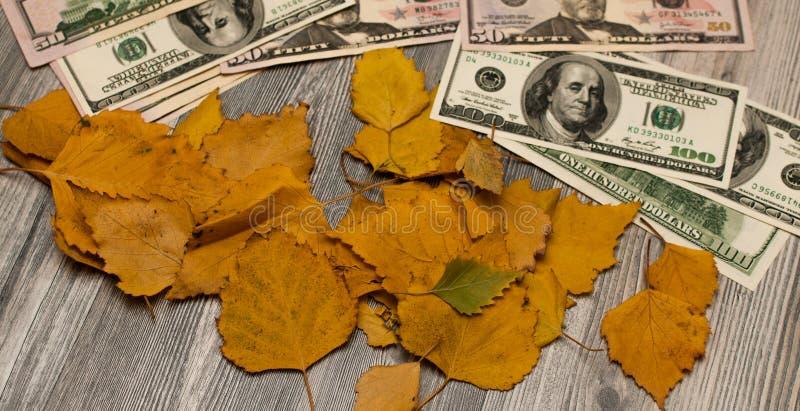 De dollarrekeningen liggen op de gele gevallen bladeren De herfst royalty-vrije stock afbeeldingen