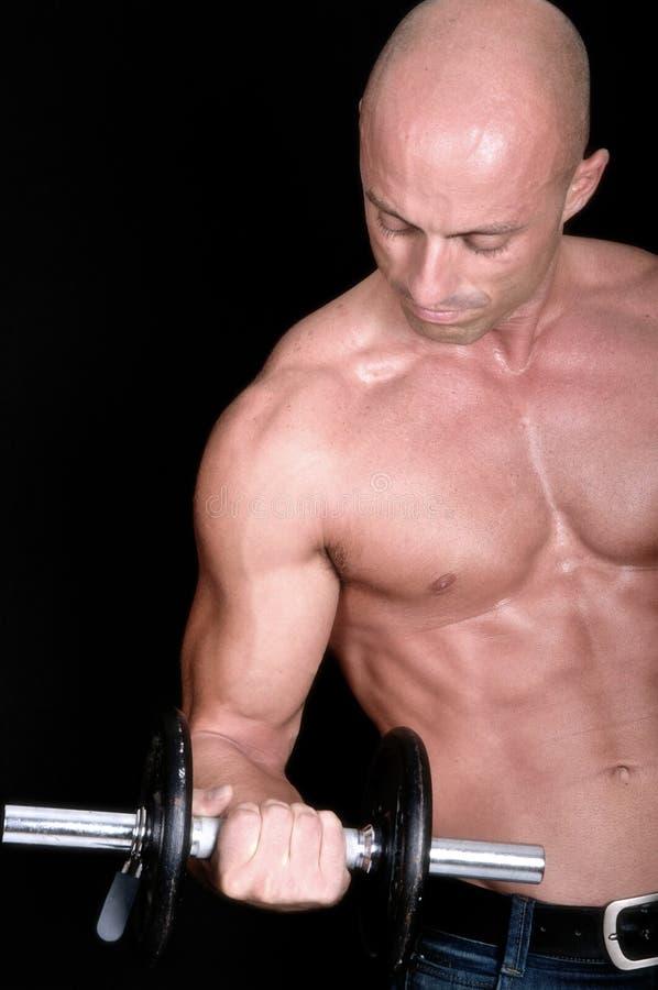 De domoor van de bodybuilder stock afbeeldingen