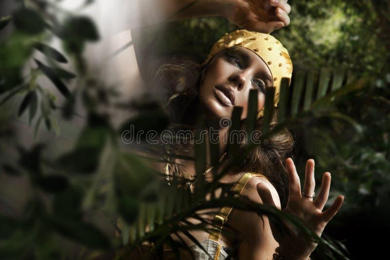 De donkerbruine dame van de schoonheid stock foto
