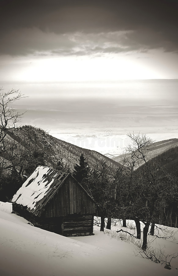 De donkere winter royalty-vrije stock afbeelding