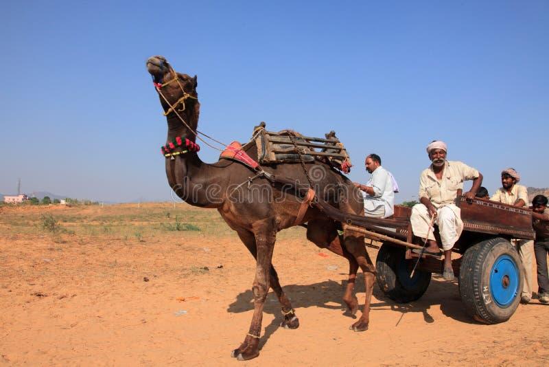 De dorpsbewoner met zijn kameel neemt aan Pushkar-Markt deel stock fotografie