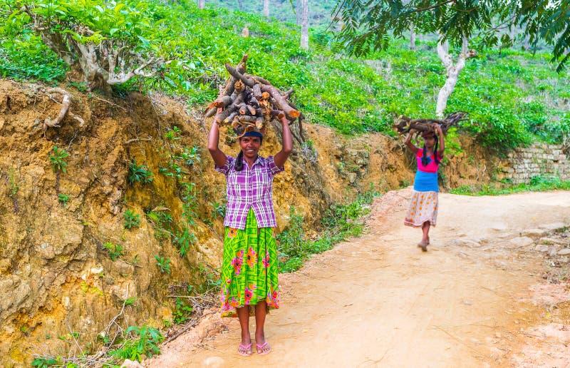 De dorpsbewoners van Srilankan stock afbeeldingen