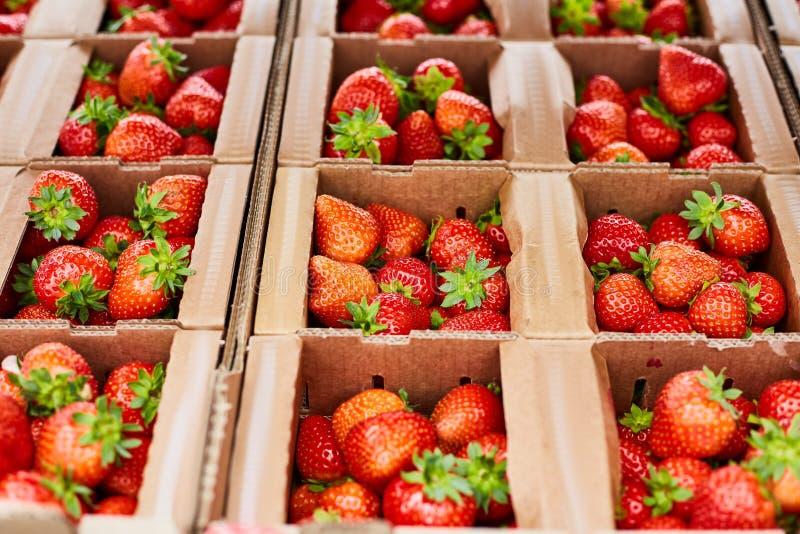 De dozen met rijpe verse aardbeien sluiten omhoog royalty-vrije stock afbeelding