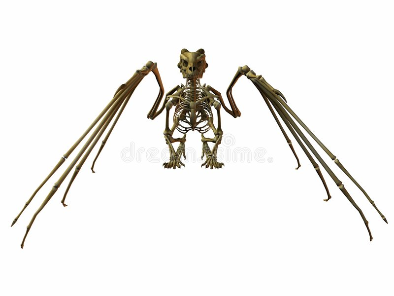 De Draak van het skelet stock illustratie