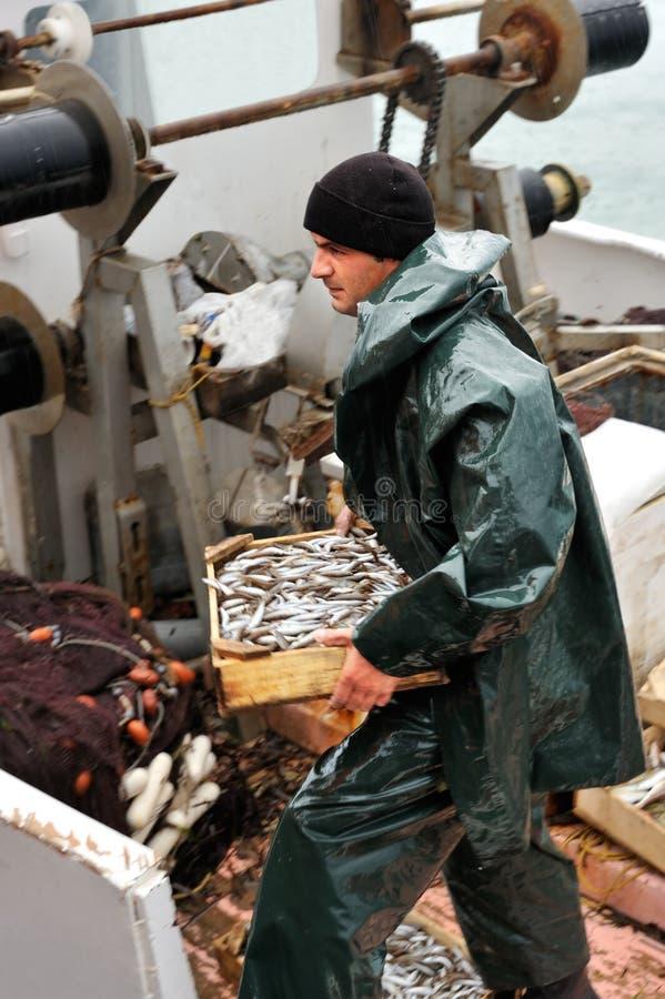 De dragende doos van de visser met vissen stock foto's