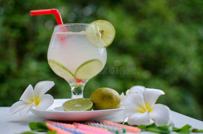 De drank van de citroencocktail stock foto