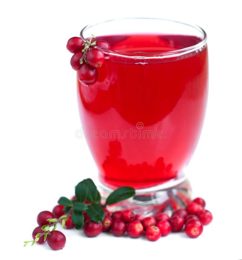 De drank van fruitamerikaanse veenbessen stock afbeelding