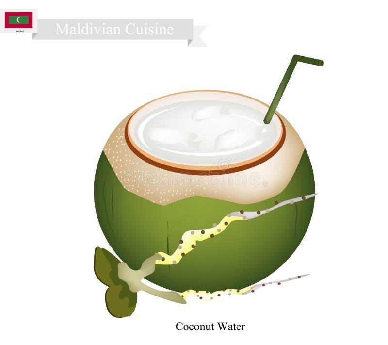 De Drank van het kokosnotenwater, een Beroemde Drank in de Maldiven royalty-vrije illustratie