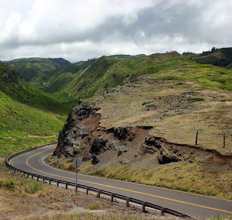 De drijf Wegen van de Berg van het Eiland van Maui stock foto's