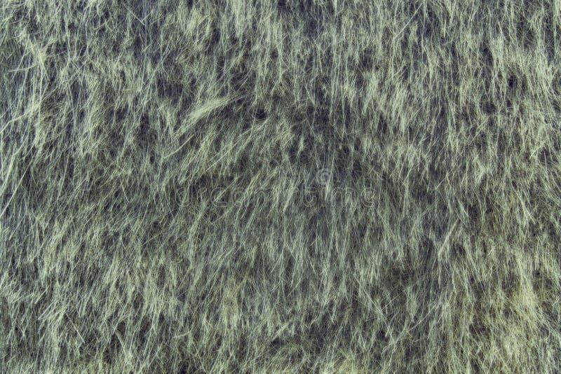De droge achtergrond van het strogras, hooitextuur na het meest havest stock foto's