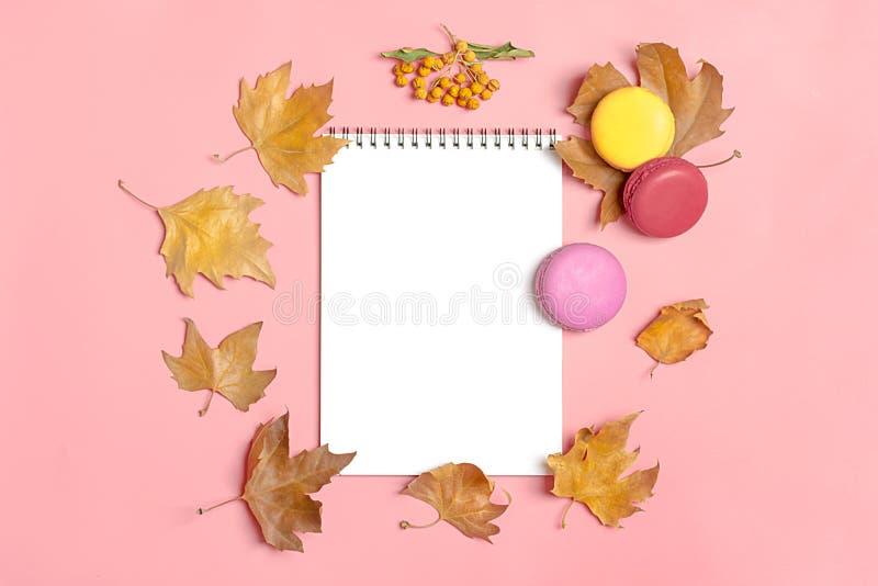 De droge esdoornbladeren, de makarons en de witte blocnote op roze achtergrond de Herfstconcept om lijstspot op Hoogste meningsvl stock afbeeldingen