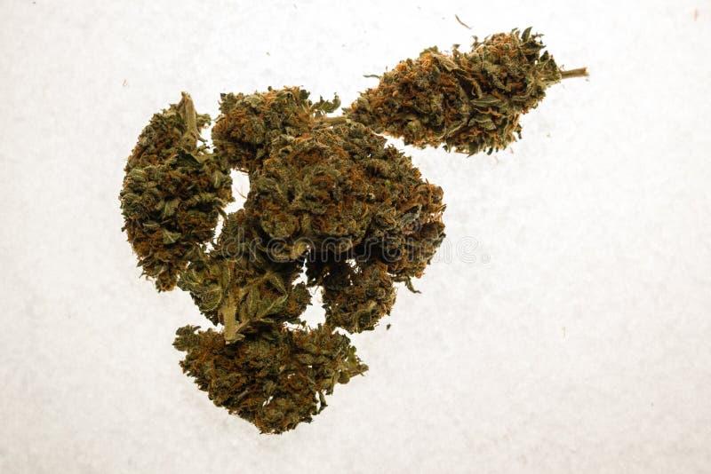 De droge knoppen van de cannabismarihuana stock afbeeldingen