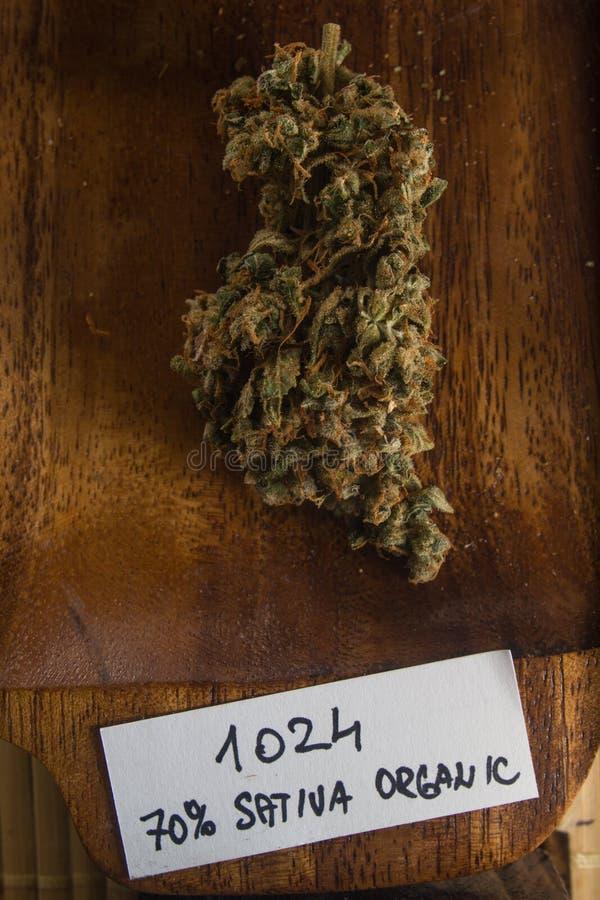 De droge knoppen van de cannabismarihuana royalty-vrije stock afbeeldingen