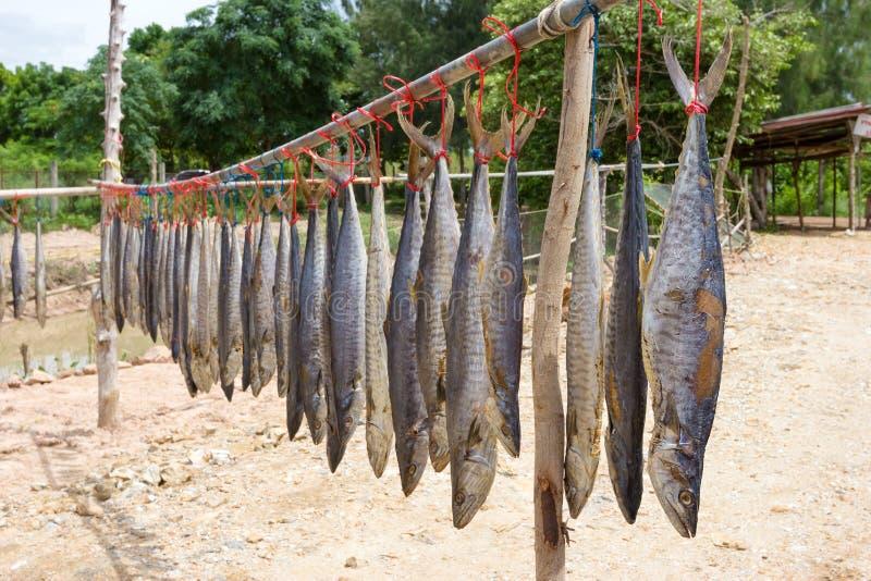 De droge vissen van de koningsmakreel, gezouten vissen stock fotografie